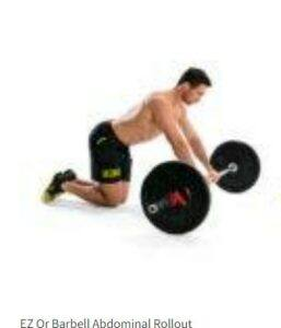 Barbell Or EZ Rollout Workout Guide