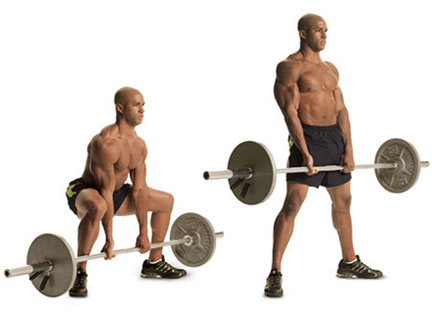 Stiff Leg Deadlifts Leg Exercise Guide