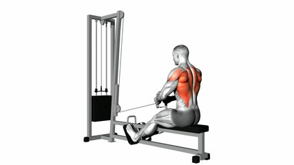 How To Do The Seated Cable Rows Back Training Exercise.