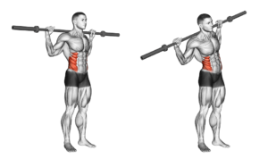 Abdominal Side Bends-How To Do The Barbell Abdominal Side Bend Obliques Exercise