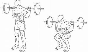 How To Do Barbell Squat