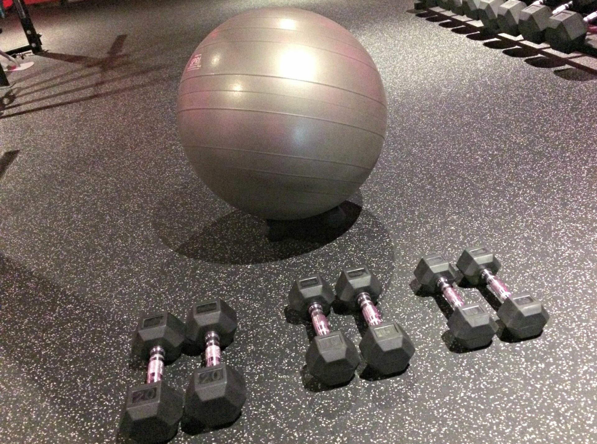 image of dumbbells and a stability ball