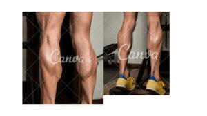 CALF RAISE LEG EXERSI