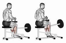 image of seated calf raise performance